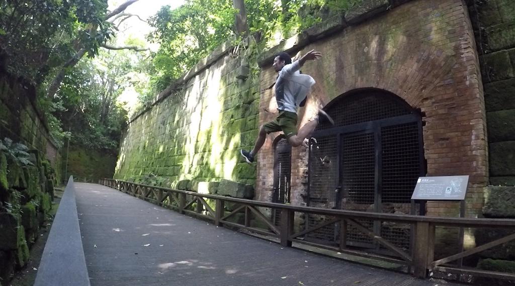 ジブリの世界を堪能しよう!猿島(横須賀)行ってみた