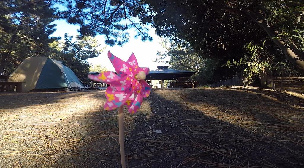 柳島キャンプ場(茅ヶ崎)〜湘南の海キャンで波音を聴きながら〜ブログと動画でレポート