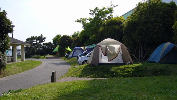 城南島海浜公園キャンプ場の詳細